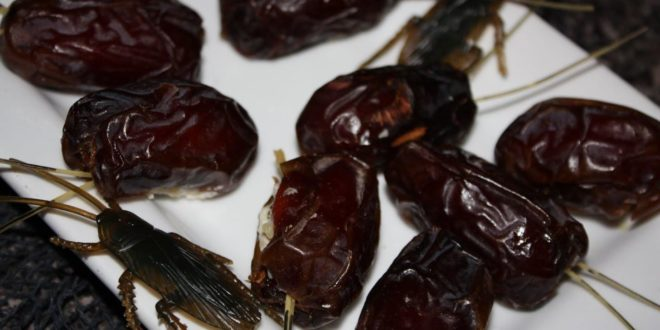 Try These Gross Halloween Foods - If You Dare! - PopHorror